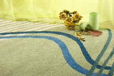 Rug Cleaning Utica NY
